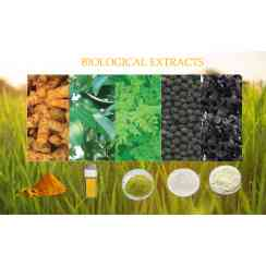 Biological Extract - Botanical extracts can be directly used as pharmaceutical, nutraceutical and cosmetic purposes. Our product range consists of turmeric extract, moringa extract, cinnamon leaf extract, ginger extract, Garcinia extract and black pepper extract.