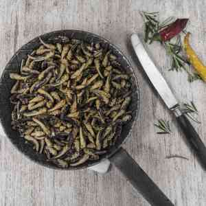 A pan of fried grasshoppers