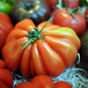 678 exposants ont présenté des fruits et légumes lors de SIAL Paris 2014