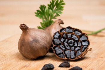 Black garlic grown in the North of France